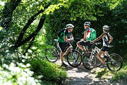 Guided bike tours in Kaltern