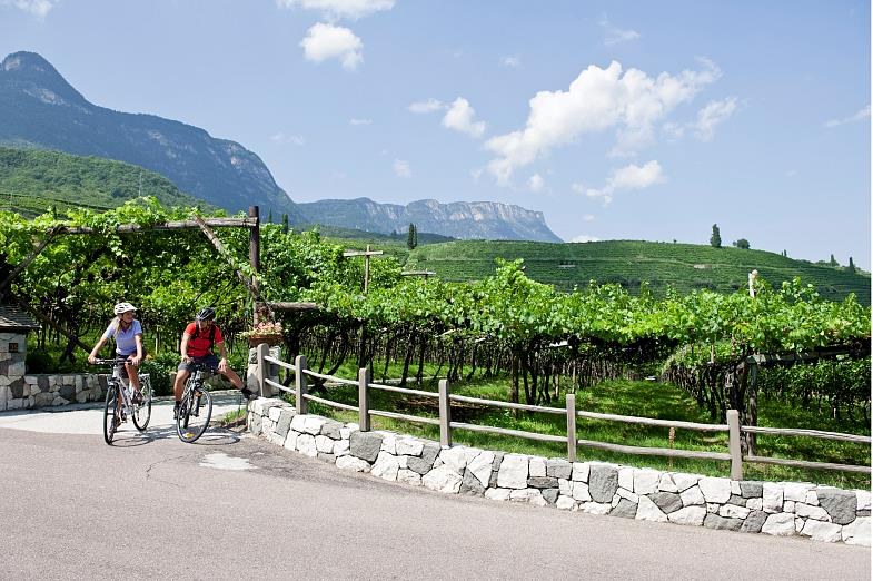 Combine a bike tour along the South Tyrolean wine path with a visit to one of the countless wine cellars...