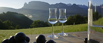 Südtiroler Grappa