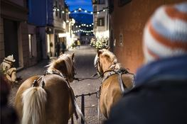 Christmas in Caldaro/Kaltern - Horse-drawn carriage